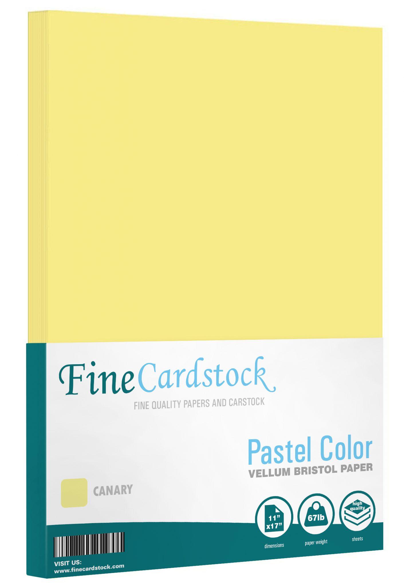 11 x 17 Pastel Paper