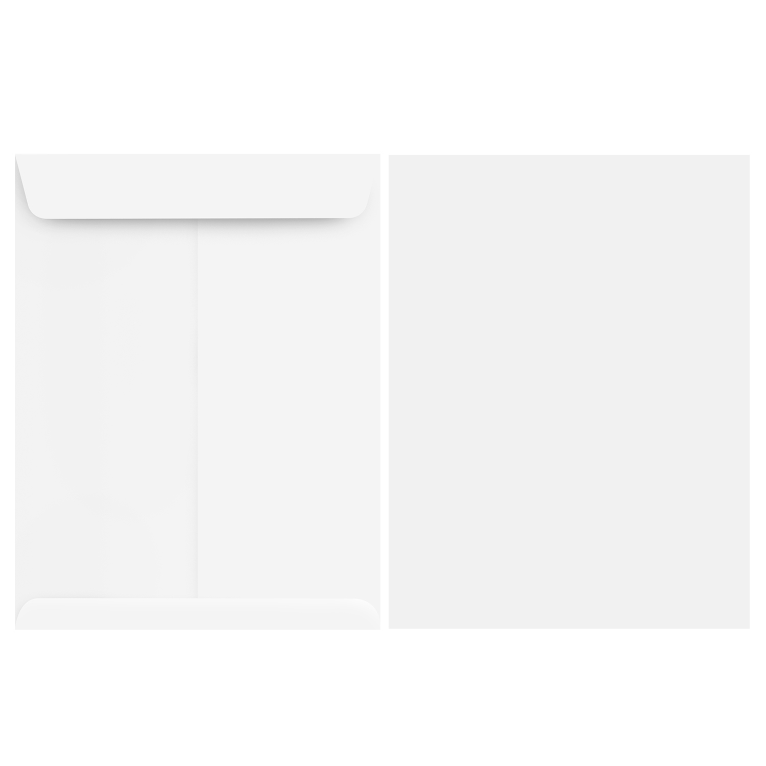 6 x 9 Catalog Envelope