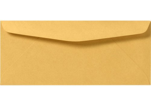 Brown Kraft Regular Envelopes