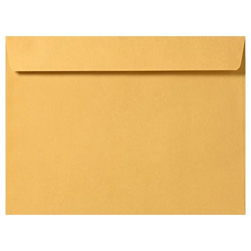 10 x 13 Booklet Envelope