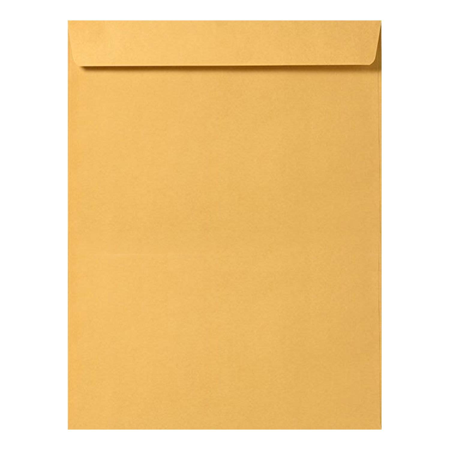 10 x 13 Catalog Envelope