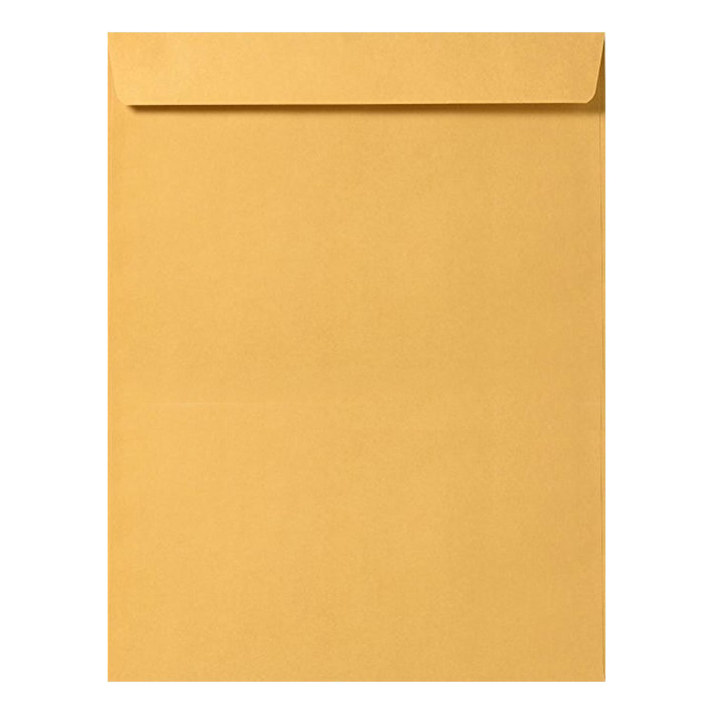 10 x 13 Catalog Envelope