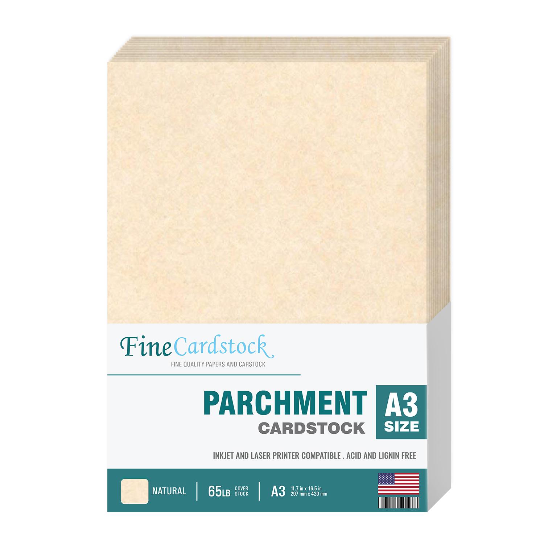 A3 Parchment Cardstock